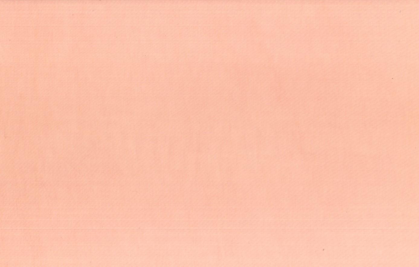 100-627-Nude.jpg