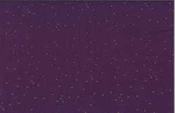 148-14G-Purple-Gold