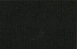 128 494-Raven