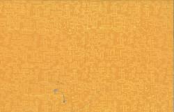 113 259-Lion