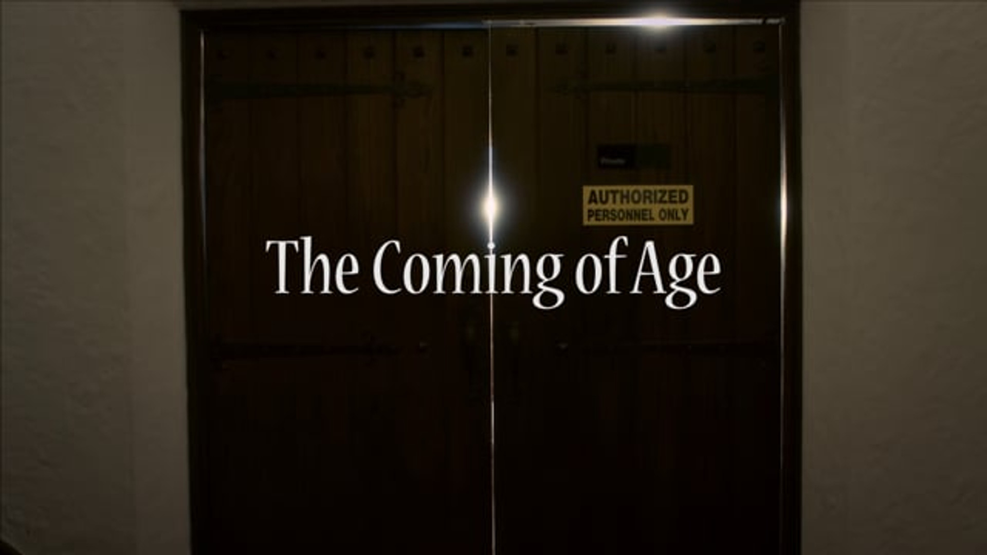 The Coming of Age (2015)