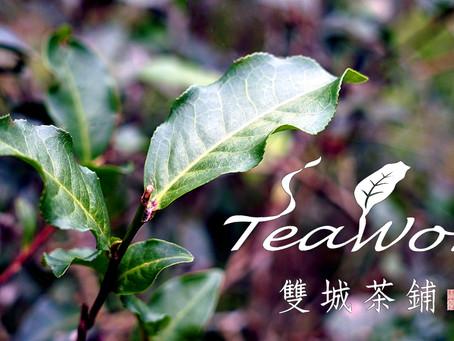 Maokong, The Closest Tea Garden in Taipei City