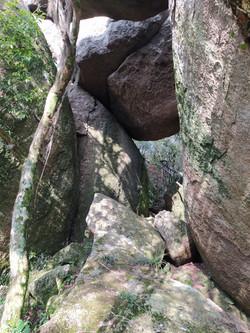 Canto das bromélias no caminho da trilha ecológica
