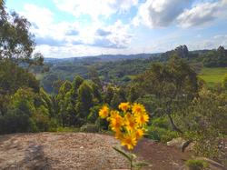 Vista da Trilha ecológica