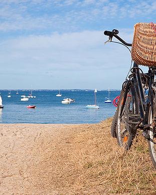Vélos - ile de ré (6).jpg