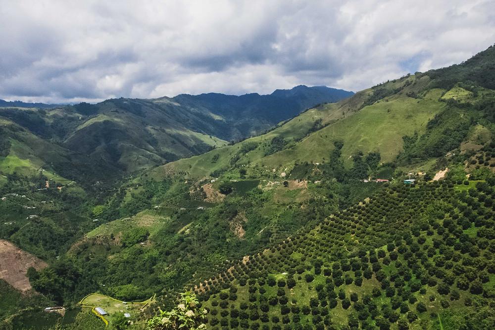 Cordillera central, desde Herveo