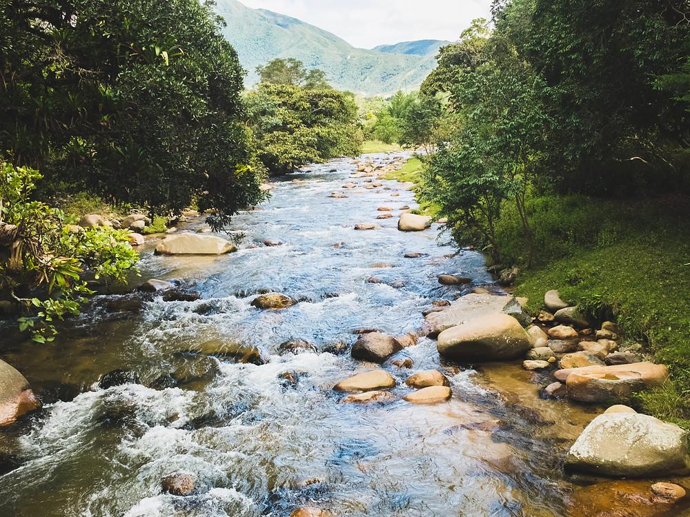 Nacimiento del rio