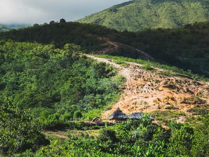 La Ruta VIII (El amansaguapos)