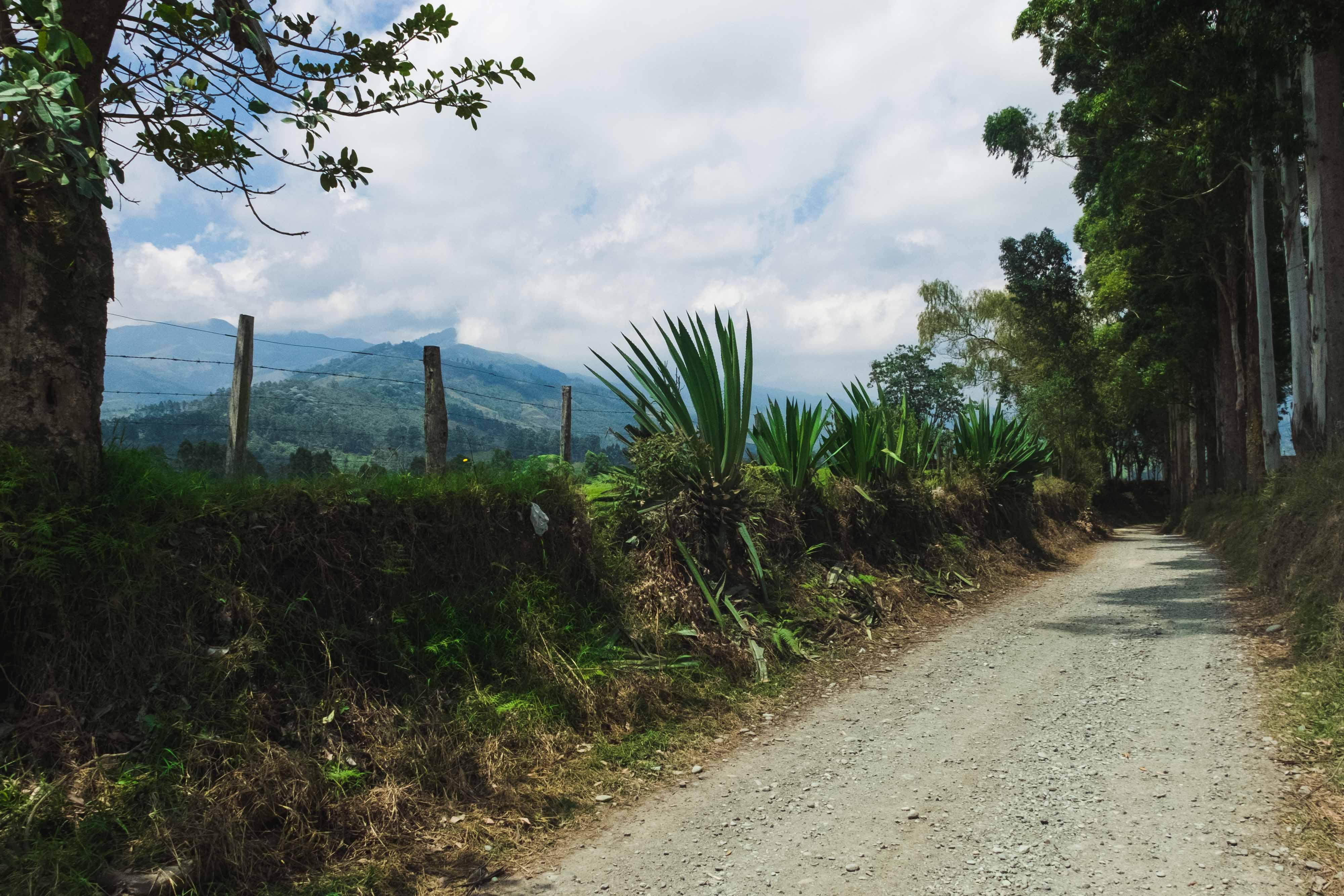 Carretera a Salento