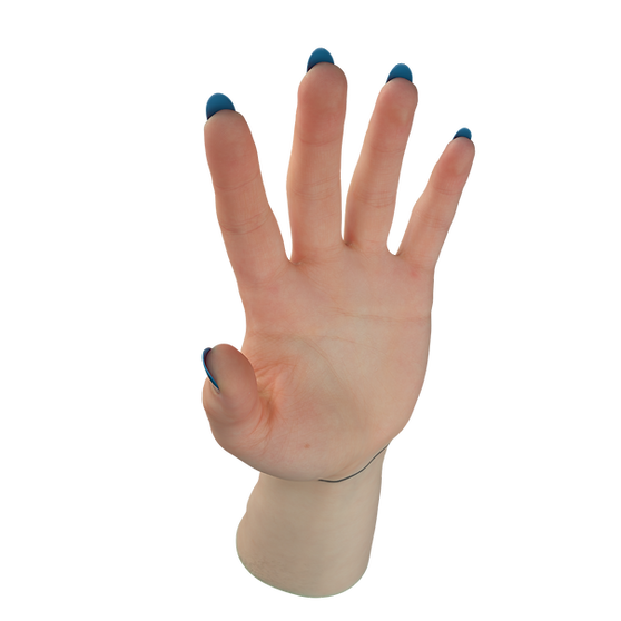 Female Hand Subsurface Scattering #1