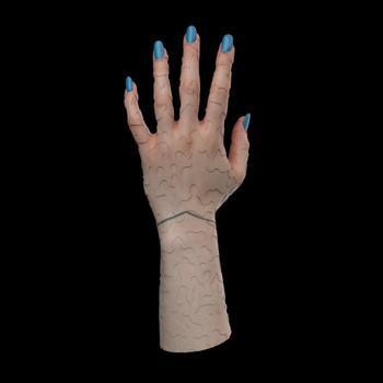 Female_Hand_Anim_Disp.mp4