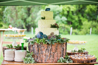 Succulent Themed Wedding Cake