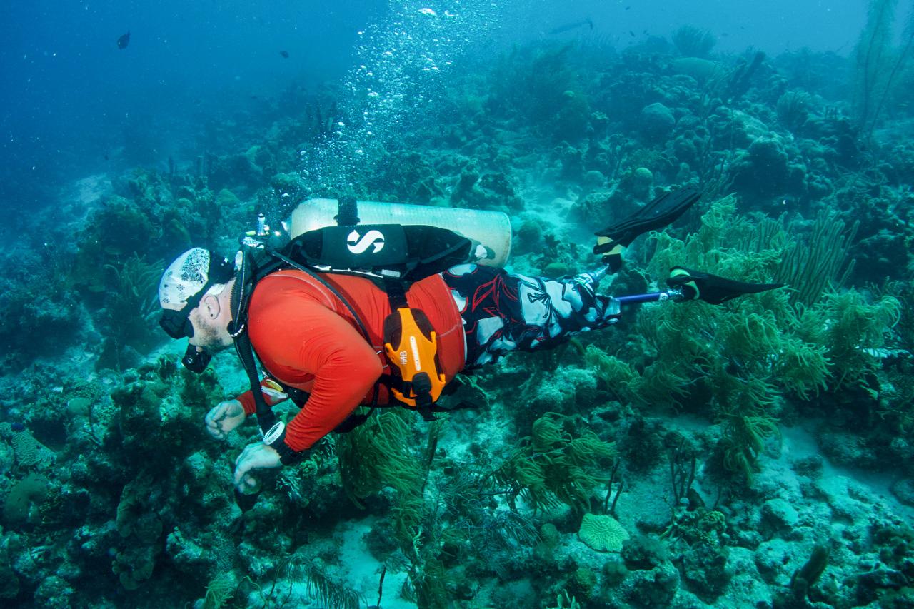 Bonaire2018-DSC06972