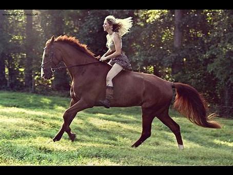 Bareback Or Saddled?