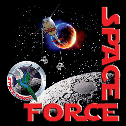 Space Force US FOREST SERVICE.jpg