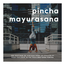 Pincha Mayurasana