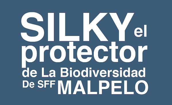 silky_protector-8.png