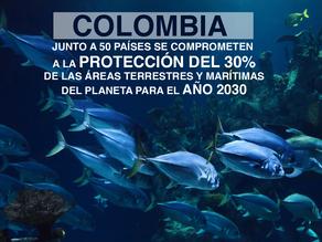 Colombia se compromete a la protección del 30% de las áreas terrestres y marítimas.