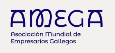 VII ENCUENTRO INTERNACIONAL  DE EMPRESARIOS GALLEGOS DEL MUNDO