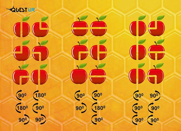 13X18 תפוחים מסתובבים.jpg