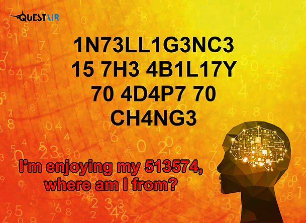 13X18 INTELLIGENCE.jpg