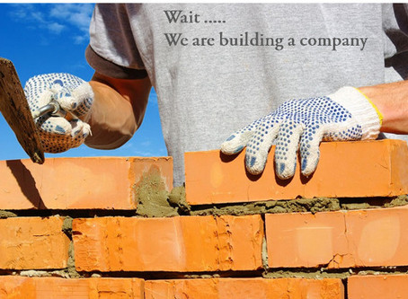 Wait... We are building a company!