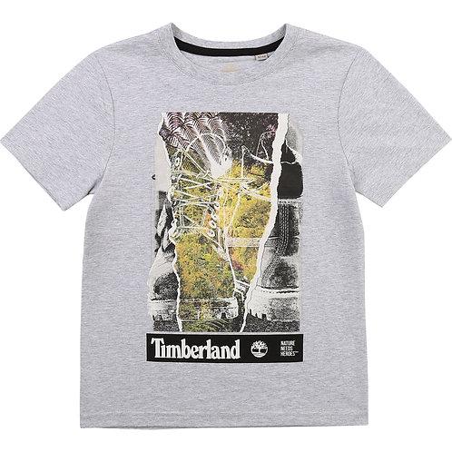T-shirt coton  TIMBERLAND