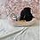 Thumbnail: Mini Bernedoodle #665 Male