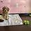 Thumbnail: Mini goldendoodle 2nd gen #648 Female