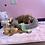 Thumbnail: Mini Labradoodle 2nd Gen #943 Male