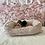 Thumbnail: Beagle #949 Female