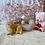Thumbnail: Bichon Frisé #973 Female