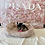 Thumbnail: Beagle #057 Female
