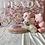 Thumbnail: Toy Bichon Poo #540 Female