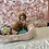 Thumbnail: MaltiPoo #702 Male