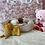 Thumbnail: Shihpoo #848 Female