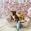 Thumbnail: Shiba Inu #626 Female
