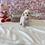 Thumbnail: Bichon Poo #811 Female