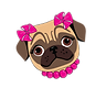 kisspng-pug-pit-bull-puppy-logo-fawn-cut