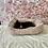 Thumbnail: French Bulldog #483 Female