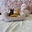 Thumbnail: Yorkshire terrier #272 Male