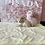 Thumbnail: Shiba Inu #804 Male