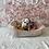 Thumbnail: English Bulldog #899 Female