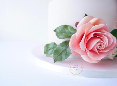 rose .JPG
