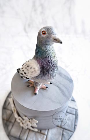 Pigeon 2.PNG