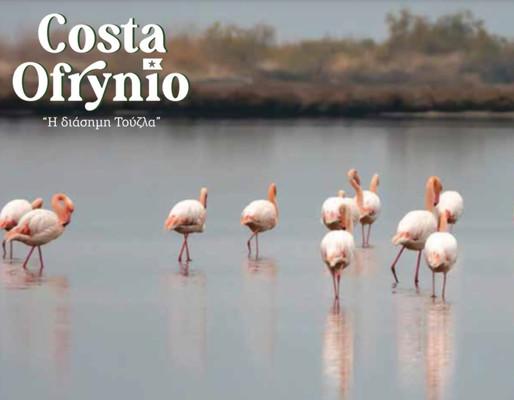 Το Costa Ofrynio μονοπωλεί το ενδιαφέρον στα ελληνικά media
