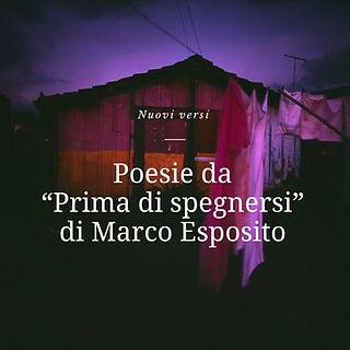 Mastrototaro.png