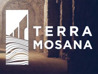 Een unieke kijk op Tongeren in 3D met Terra Mosana