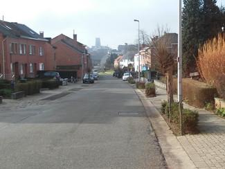 Nieuwe bomen en asverschuiving in de Merkenstraat