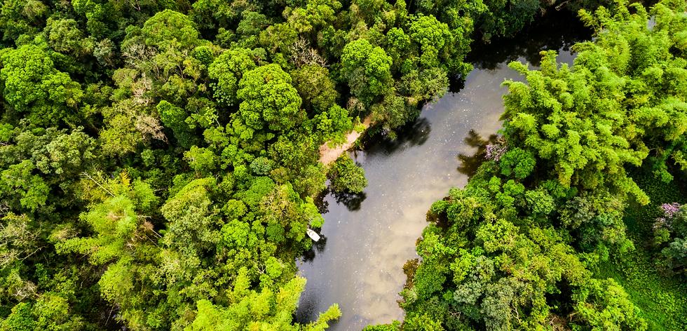 FOTOS AMAZONIA - cópia 2.png